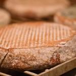 IMG_7805-cheese
