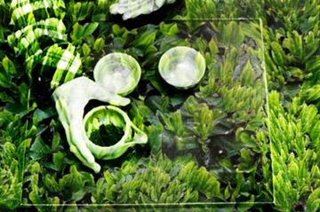 Green-Ghost III_Shincha