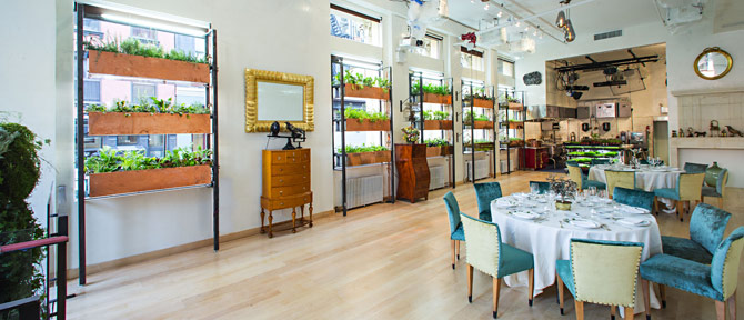 Bouley Botanical - 281 Church Street, NYC