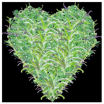 botanical-heart