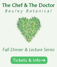 Chef and the Doctor Fall 2015 Series