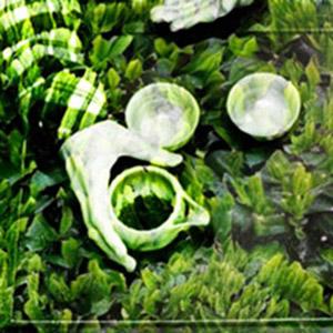Green-Ghost III_Shincha-300