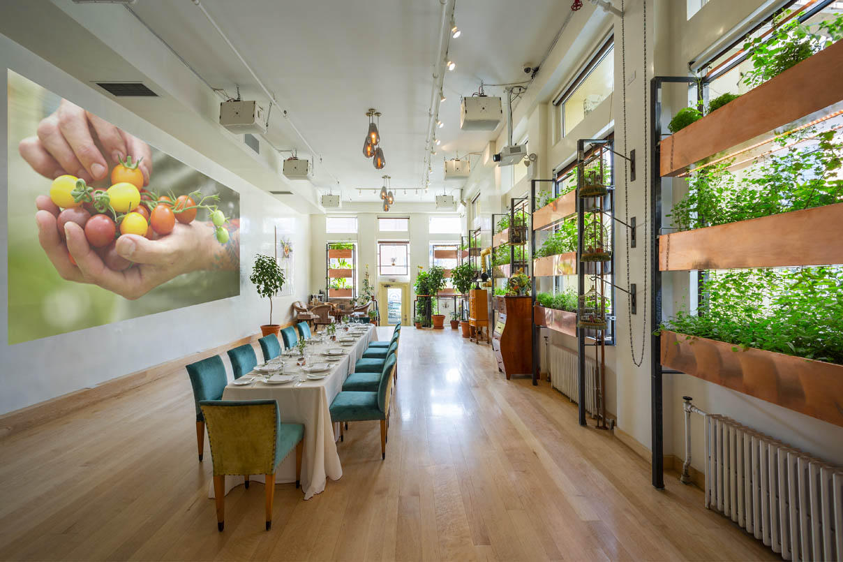 Bouley Test Kitchen Events